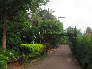 the lane up to guesthouse restaurant where we ate