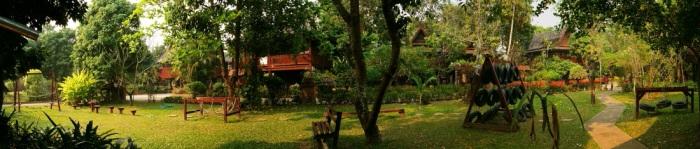 chiangmai-juniper3