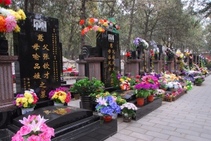 Qing Ming Jie at Babaoshan Revolutionary Cemetary