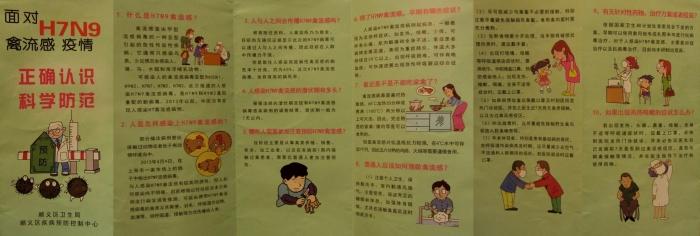 bird-flu-pamphlet