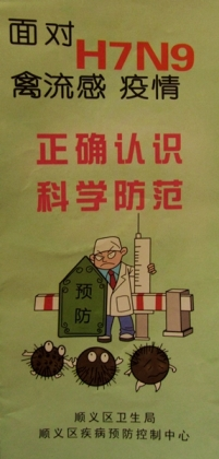 Bird Flu Pamphlet (cover)