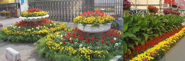 Patriotic displays of red and yellow flowers are common during National Holiday (these are from my first October, in 2004).