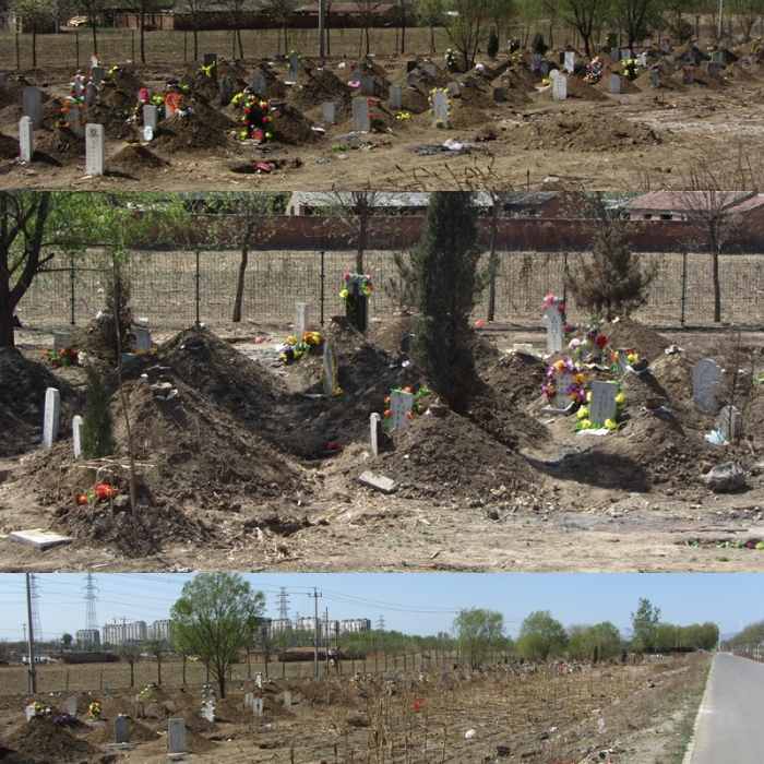 qm_graveyard