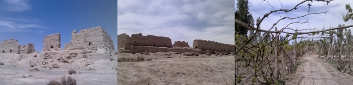 2,000+ year old relics in the desert near Yumen Pass, and the vineyard where we ate our lovely lunch.