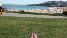 coogee-beach