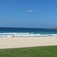 A week in Wollongong
