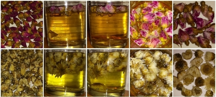 Rose and Chrysanthemum teas - dry flowers, steeped 10 minutes, steeped 20 minutes, looking down into the cup, and the flowers after steeping.
