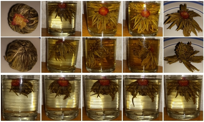 A blooming tea opening. Front and side/back views, dry, steeped 5, 10 and 20 mins, and after steeping. Bottom row: the tea unfurling over 5 minutes.