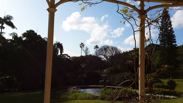 My view of the gardens toward the bay from the verandah of the house.