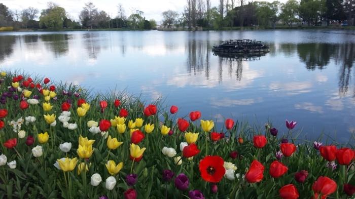 floriade15-lake1